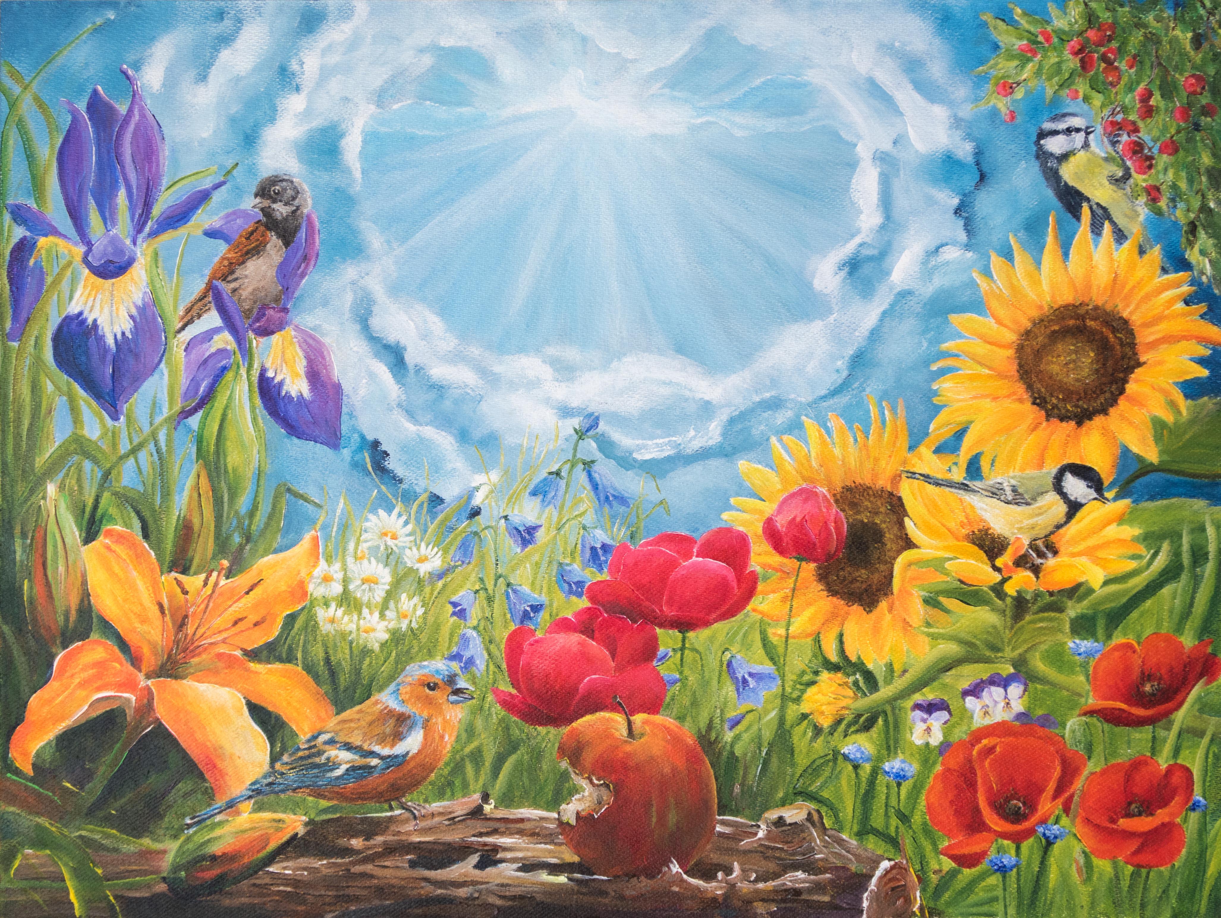 Kijk naar de vogels in de lucht... Mattheus 6 :26