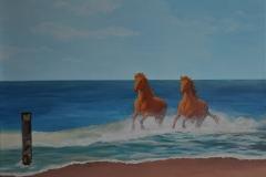 paarden-in-zee