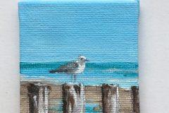 mini schilderijtje meeuw op paal 5x5 acryl op canvas 5,-
