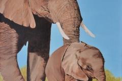 Olifant met jong (staand)