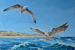 Buitenschilderij: meeuwen in zee 60x122 acryl op trespa  495,-