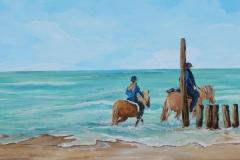 Paarden in zee Zoutelande